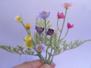 Miniature poppy flower assorted colour powdery leaves foliage image is loading miniature poppy flower assorted colour powdery leaves foliage mightylinksfo