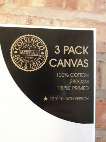3 PACK White CANVAS 100/% COTTON Blank TRIPPLE PRIMED 280GSM WALL ART 12x10inch