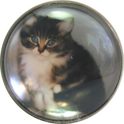 """1"""" Crystal  Dome Button of Fluffy Tabby Cat   FREE US SHIPPING"""