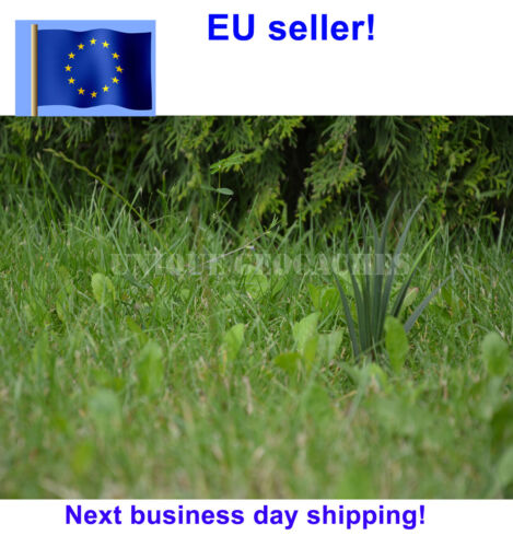 Fake grass plant sneaky evil Geocaching container geocache with logbook handmade