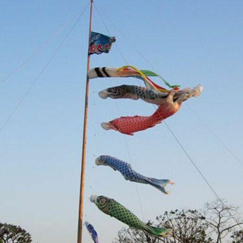 40cm Japanese Windsock Carp Flag Koi Nobori Sailfish Fish Wind Streamer Decor UK