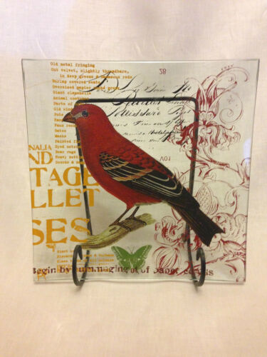Square Bird Glass Plate