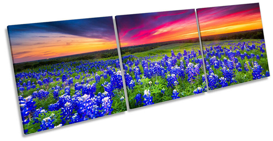 Flowers Landscape Sunset TREBLE CANVAS WALL ART Box Frame Print