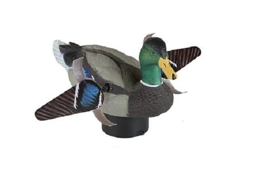 LUCKY DUCK LUCKY HD SPLASHER flotante Spinning ala movimiento Señuelo avesnuevocampeón