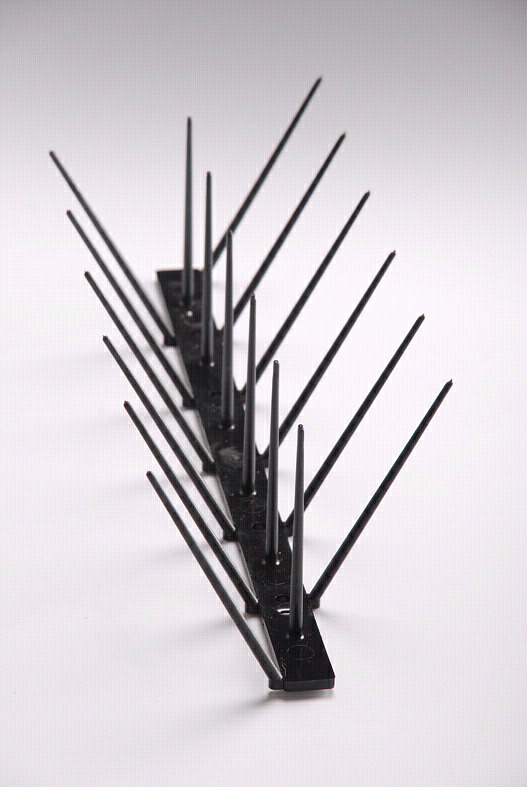 Bird Spikes - plastic and stainless steel