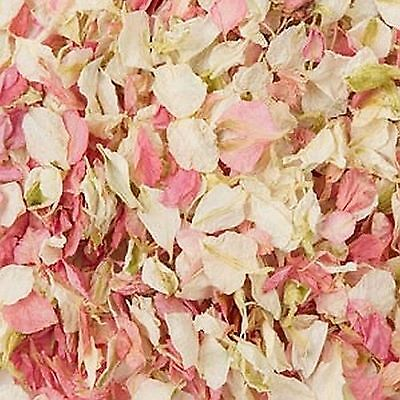 Delphinium Confetti Petals Biodegradable Natural Wedding - 23 Colours