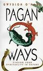 Pagan Ways: Finding Your Spirituality in Nature by Gwydion O'Hara (Paperback, 1997)