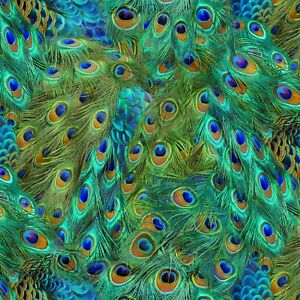 Fabric Peacock Feathers Full Elizabeth on Cotton 1/4 Yard 589