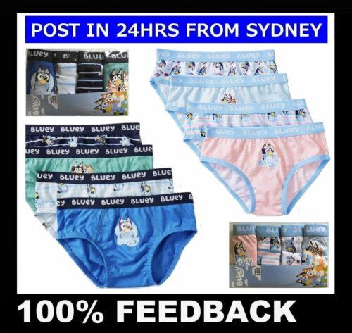 BLUEY BINGO UNDERWEAR ~ Kids Boys Girls Underpants Briefs Knickers