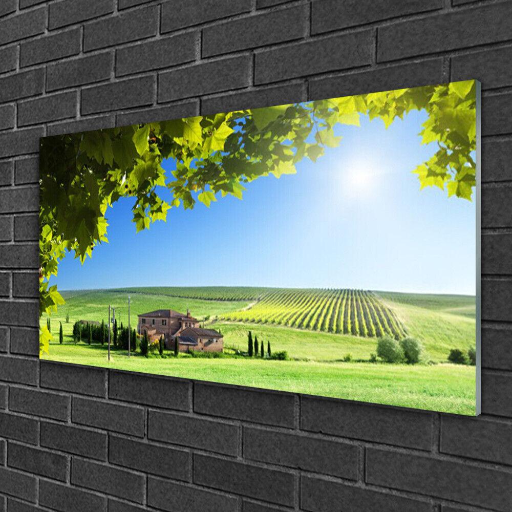 Tableau sur verre Image Impression 100x50 Paysage Feuilles Champ