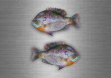 2x sticker adesivi adesivo pesca pescadore pesce bluegill murali moto auto