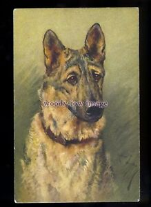 an0332-Dog-Alsatian-No-109-Artist-Arthur-Wardle-postcard