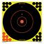 Birchwood-Casey-Shoot-N-C-cibles-TOUTES-LES-TAILLES-TIR-Airgun-fusil-de-chasse miniature 10