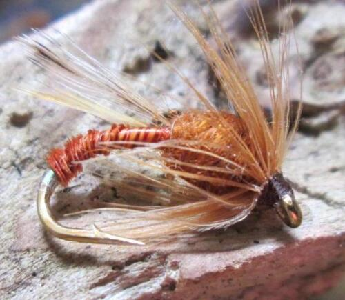 Gilchrist Fliegen 3 Stück von einer Farbe /& Größe. Emerger Nymphen