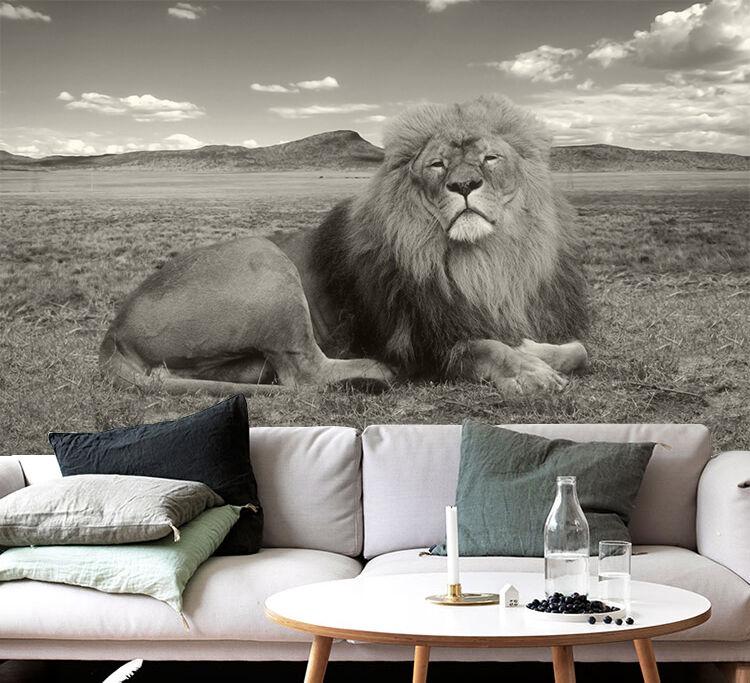 3D Lawn Lion 835 Wallpaper Mural Paper Wall Print Wallpaper Murals UK
