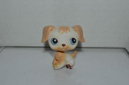Littlest Pet Shop~#140~Golden Retriever~Dog~Cream Beige~Blue Eyes~Red Magnet