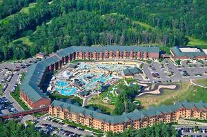 Glacier Canyon Wisconsin Dells, AUGUST 15-18, 1 Bedroom Deluxe, SLEEP 4