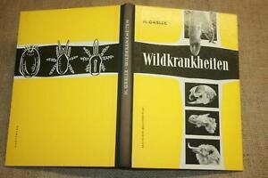 Fachbuch-Wildkrankheiten-Jaeger-Tierarzt-Foerster-Jagd-Wild-DDR-1957