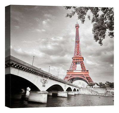 Stampa su Tela Vernice Effetto Pennellate PARIGI