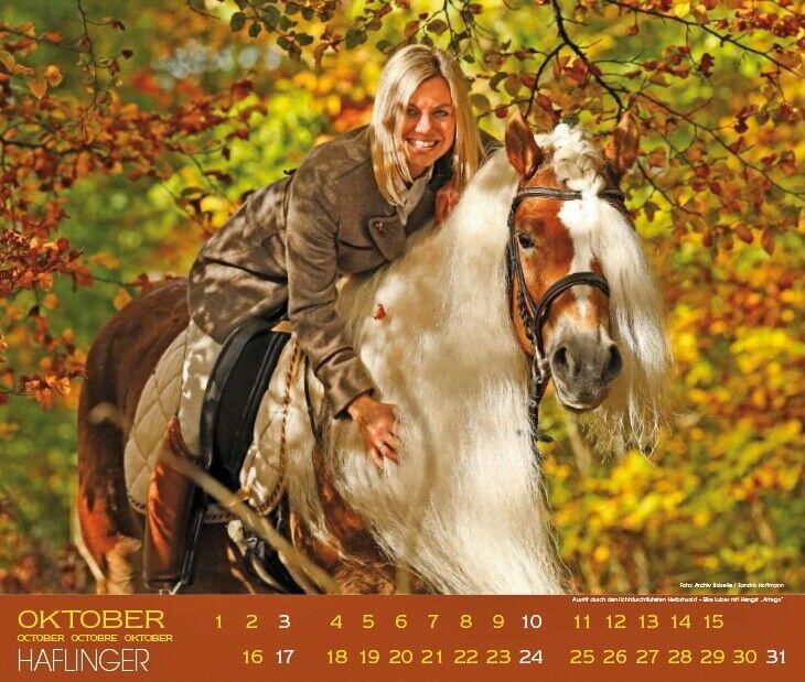 Andet, Haflingere 2021 / fotokalender