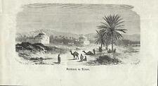Stampa antica TUNISI panorama dei dintorni Tunisia 1882 Old antique print