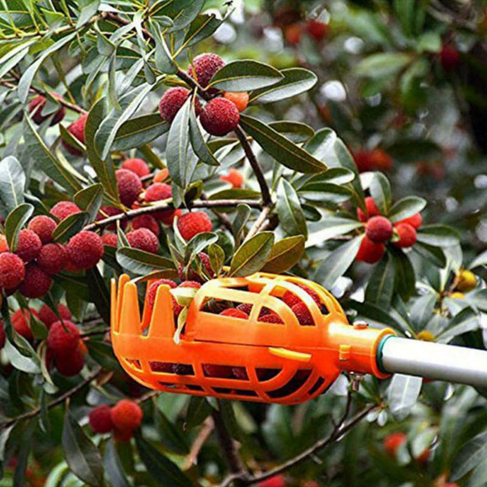Plastic Orange Fruit Picker without Pole Fruit Catcher Tools Gardening Pick F5P1
