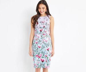 8ab6e72bb050 OASIS DRESS PENCIL MAGNOLIA OMBRE Lilac Blue Pink Butterflies Cotton ...