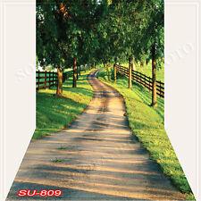 Spring 10'x20'Computer/Digital Vinyl Scenic Photo Backdrop Background SU809B88