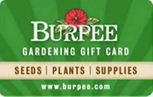 100-Burpee-Gift-Card-Email-Delivery
