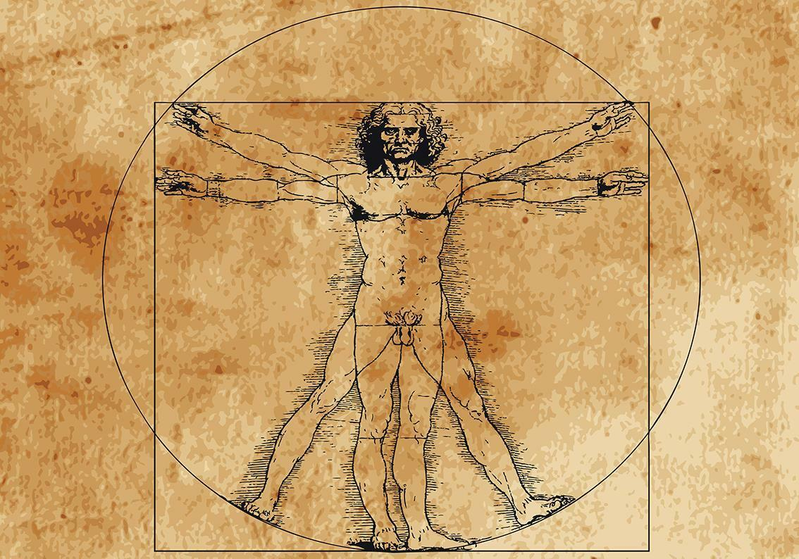 Da Vinci Vitruvian Man Photo Wallpaper Woven Self-Adhesive Wall Mural Art M85