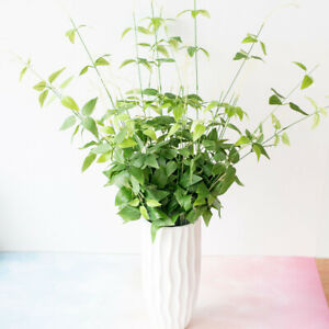 Am-1Pc-Artificial-Bamboo-Plant-Photograph-Prop-Wedding-Party-Office-Table-Decor