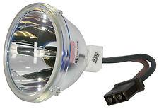 New Lamp Bulb for Toshiba D95-LMP 23311153A 23311153