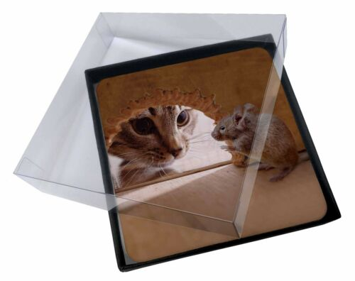 4x Cat and Mouse Picture Table Coasters Set in Gift Box, AMO3C