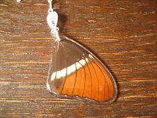 Schatz der Natur Anhänger Schmetterlingsflügel E 925er Silber Kette Eco Friendly