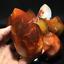 Natural-carnelian-flame-Shape-Quartz-Crystal-agate-torch-specimen-Healing-200g thumbnail 10