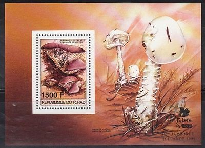 Stamps Chad 653 Mushrooms Mint Nh