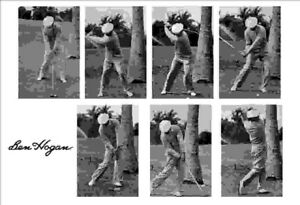 Details About Ben Hogan Golf In Florida Swing 7 Image Action 13 X 19 Photo Print