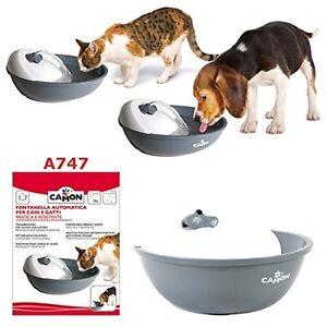 Fontaine à boire automatique de Camon pour les chats et les chiens résistants