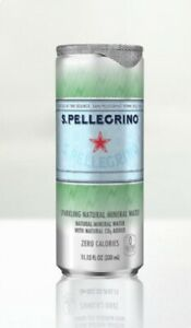 Acqua-San-Pellegrino-Lattina-33-cl-x-24