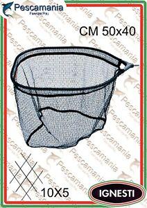 Testa-Guadino-Ignesti-fiberglass-cm-50x40