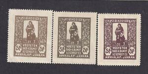 Cinderellas - Hungary Arvaalap Javara WW1 3 Charity Poster Stamps