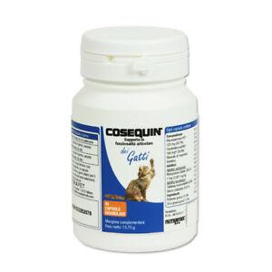 COSEQUIN-GATTO-45-cpr-Cura-e-protegge-le-articolazioni-del-gatto