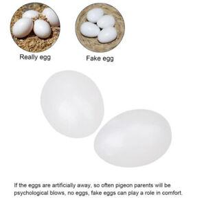 10Pcs-Blanc-Solide-Plastique-Oeufs-Factice-Faux-Oeufs-pour-Pigeons-Hatch-Oiseau