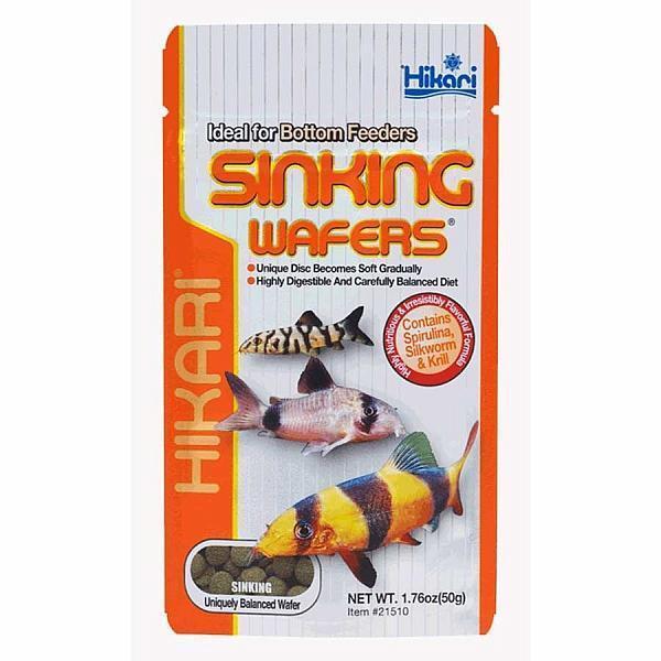 Hikari Sinking Wafers 50g Tropical Catfish & Loaches Sinking Wafer Disc Food 6mm
