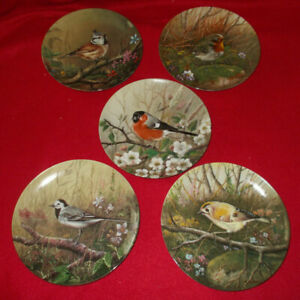 BIRD-COLLECTORS-PLATES-BRADFORD-EXCHANGE-SERIES-22-T40-6-SELECT-PLATE