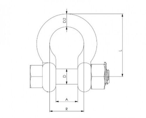 Rundschäkel mit Sicherungsbolzen Edelstahl A4 geschweift geschmiedet ARBO-INOX®