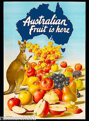 Australia Australian Fruit is Here Vintage Travel Advertisement Art Poster