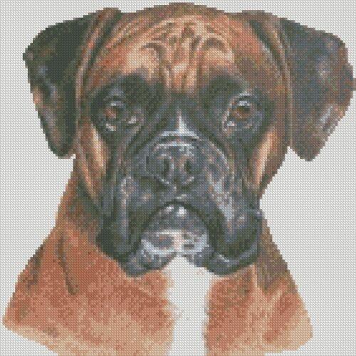 Kit Boxer Dog Cross Stitch Chart