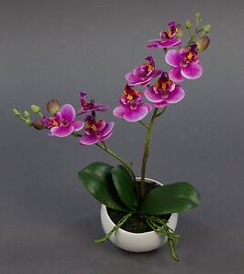 Orchidee-Real-Touch-28cm-rosa-pink-in-weisser-Keramikvase-DP-Kunstblumen