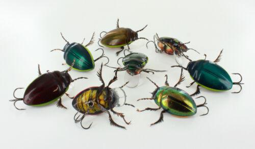 Water beetle No2,best quality,topwater lure,innovation IZUMI NEW HANDMADE bait